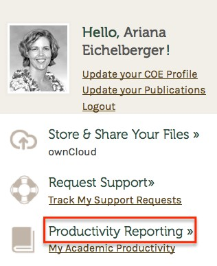 Productivity Reporting button location