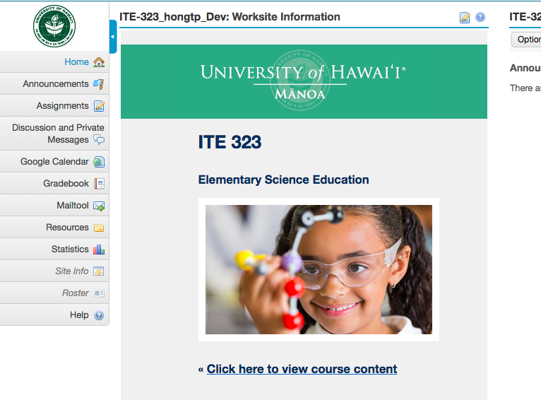 Screenshot of ITE 323 course site